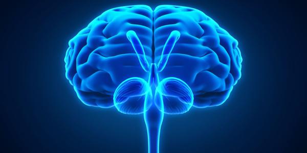 Nerwy czaszkowe – diagnoza i leczenie