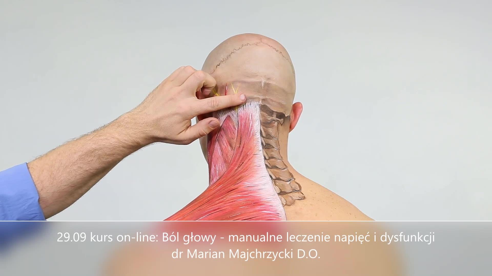 Obejrzyj 29.09 kurs on-line: Ból głowy - manualne leczenie napięć i dysfunkcji