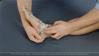 Obejrzyj 22.10 |  On-line: Stopa – skręcenie kostki, ostroga piętowa czy rozcięgno podeszwowe?