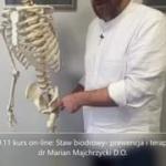 Obejrzyj 20.11 kurs on-line: Staw biodrowy- prewencja i terapia