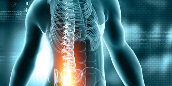 Powięź w terapii bólu pleców