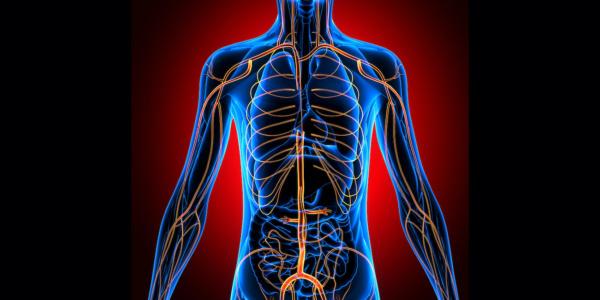 Neuropatie kończyny górnej – anatomia i sposoby leczenia